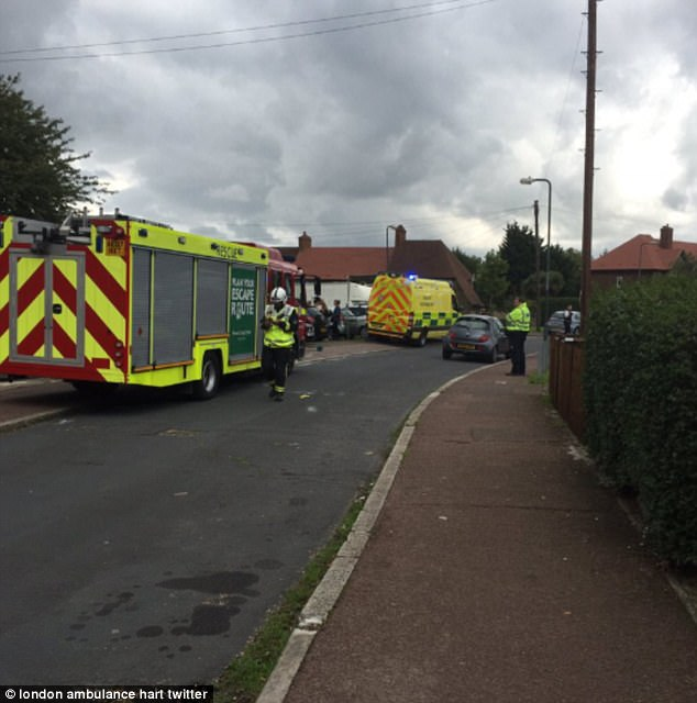 Emergency services were rushed to Alwold Crescent in Lee, south London after residents were rushed to hospital with nausea and vomiting
