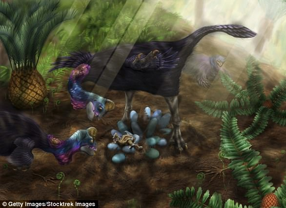 Researchers examined 66 million-year-old eggs, belonging to oviraptor dinosaurs called Heyuannia huangi (illustrated)