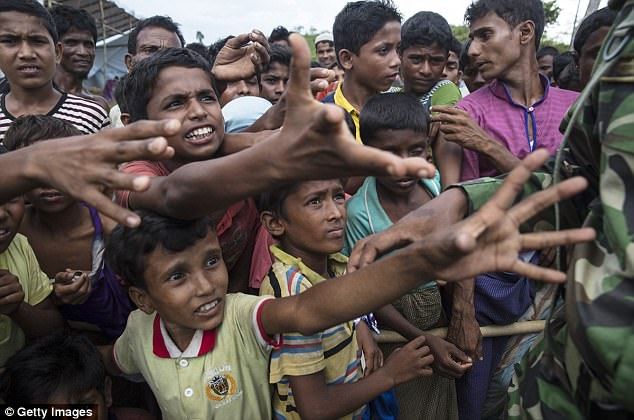 Rohingya boys are pictured reaching for humanitarian aid near Balukhali, Bangladesh. The UN has accused Myanmar of 'ethnic cleansing' in the Rakhine region but the government claims it is only targeting 'terrorists'