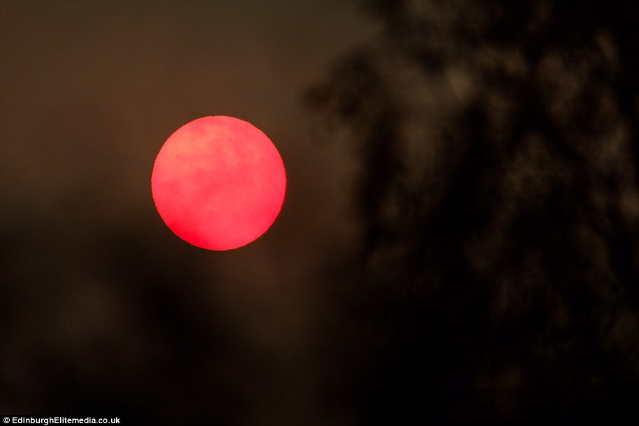 SOUTH LANARKSHIRE: Hazy cloud around a very watery sun in South Lanarkshire today