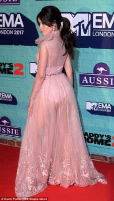 Peek- a-boo! Keen on making a style statement at the awards ceremony, Camila looked sensational as she flaunted her figure in the blush pink number, which boasted see-through detailing, teasing at her bra and high -waisted underwear