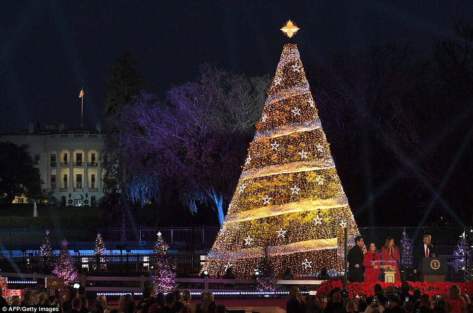The lighting of the National Christmas tree is in its 95th year, easily making it one of the country's oldest traditions