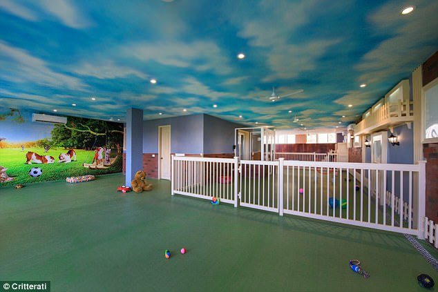 One of the playrooms for the dogs at Critterati, which was opened by chief executive Deepak Chawla