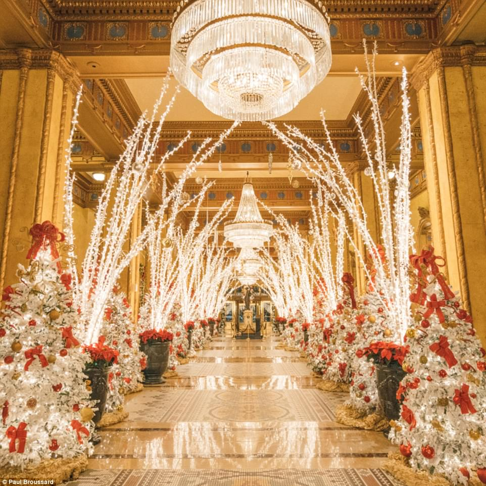 The Roosevelt New Orleans Hotels Christmas Display