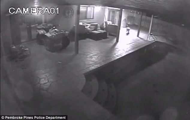 Police are asking for the public's help in locating the unidentified man with the BB gun. The surveillance image above shows the home of the dog owners on the night of the shootings