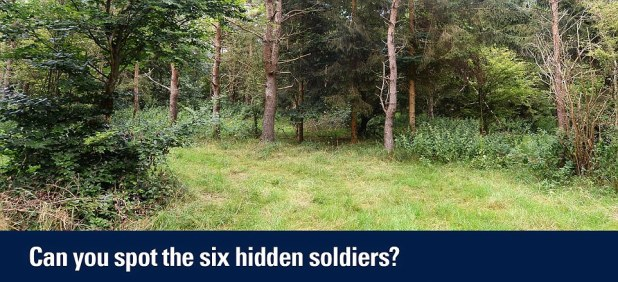 The Household Cavalry posted this picture of six snipers nestled away in the foliage - but can you spot the riflemen?