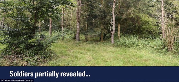 The challenge proved difficult so the Household Cavalry tweeted this picture which shows the snipers partially revealed
