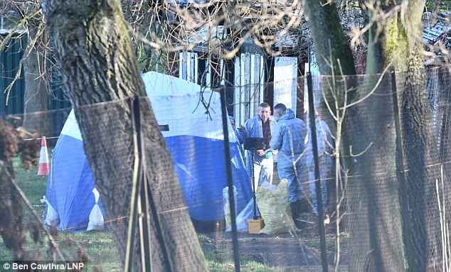 A young woman has been murdered as she walked through Finsbury Park in north London  on Christmas Eve and her body was found yesterday (pictured covered by a tent)
