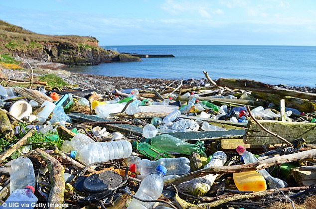 Theresa May has pledged to launch a 25-year strategy to eliminate the blight of 'avoidable' plastic, including bottles, cups and packaging (pictured on a beach in Cork)