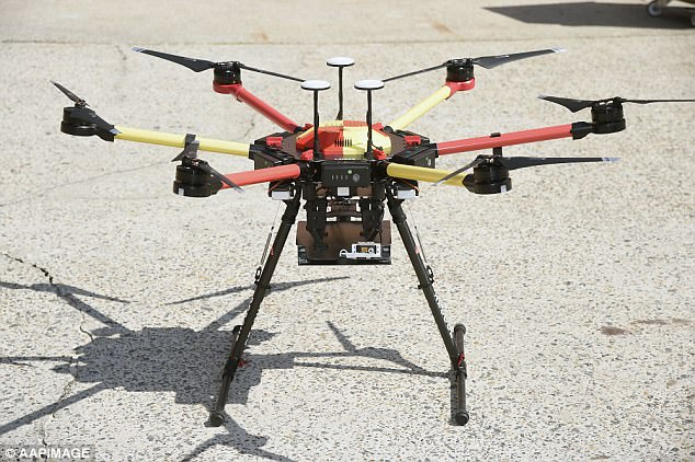 TheLittle Ripper dronehas been used to back up Queensland and New South Wales lifeguards since the beginning of summer