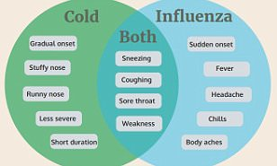 How to identify if you have the flu or just a common cold | Daily ...