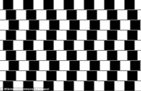When alternating columns of dark and light tiles are placed out of line vertically, they can create the illusion that the rows of horizontal lines taper at one end.The effect depends on the presence of a visible line of gray mortar between the tiles