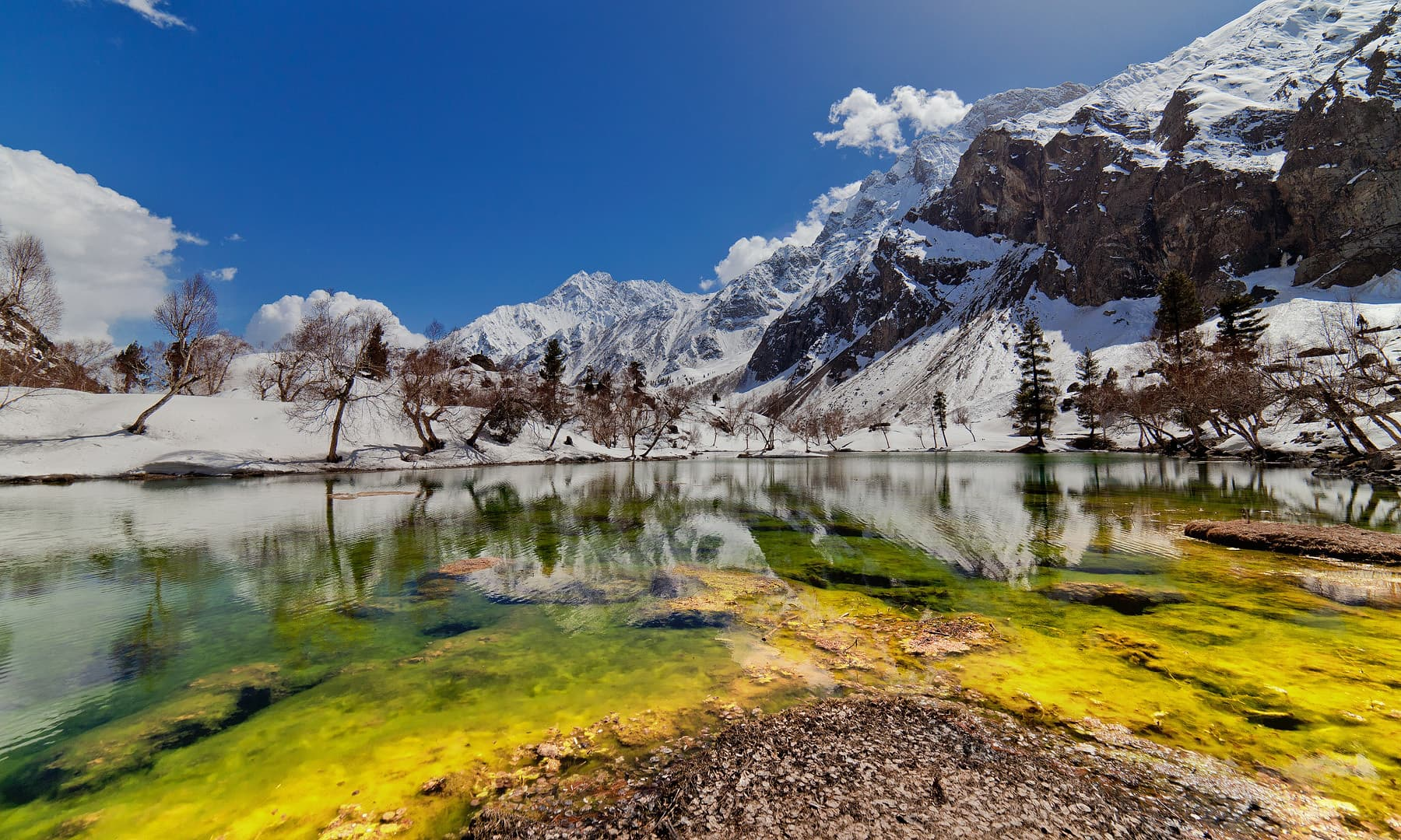 Naltar lake. — Syed Mehdi Bukhari