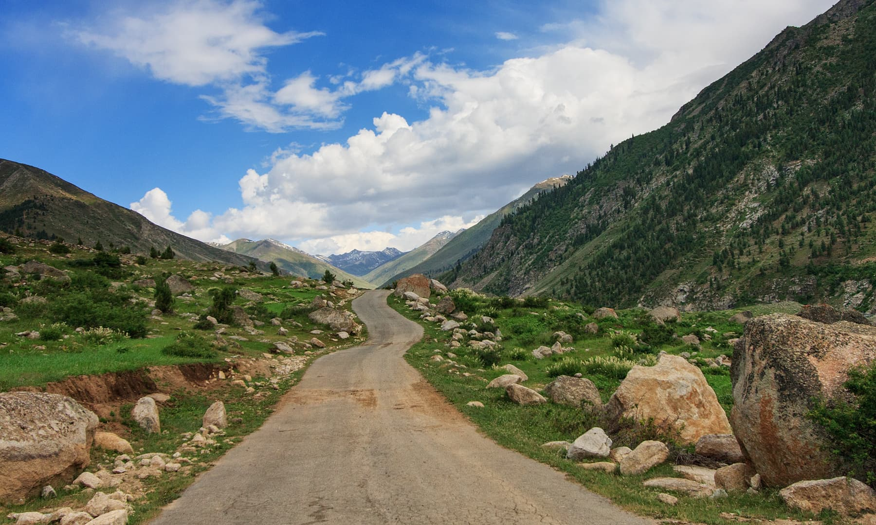 Road to Astore from Chillam. — Syed Mehdi Bukhari