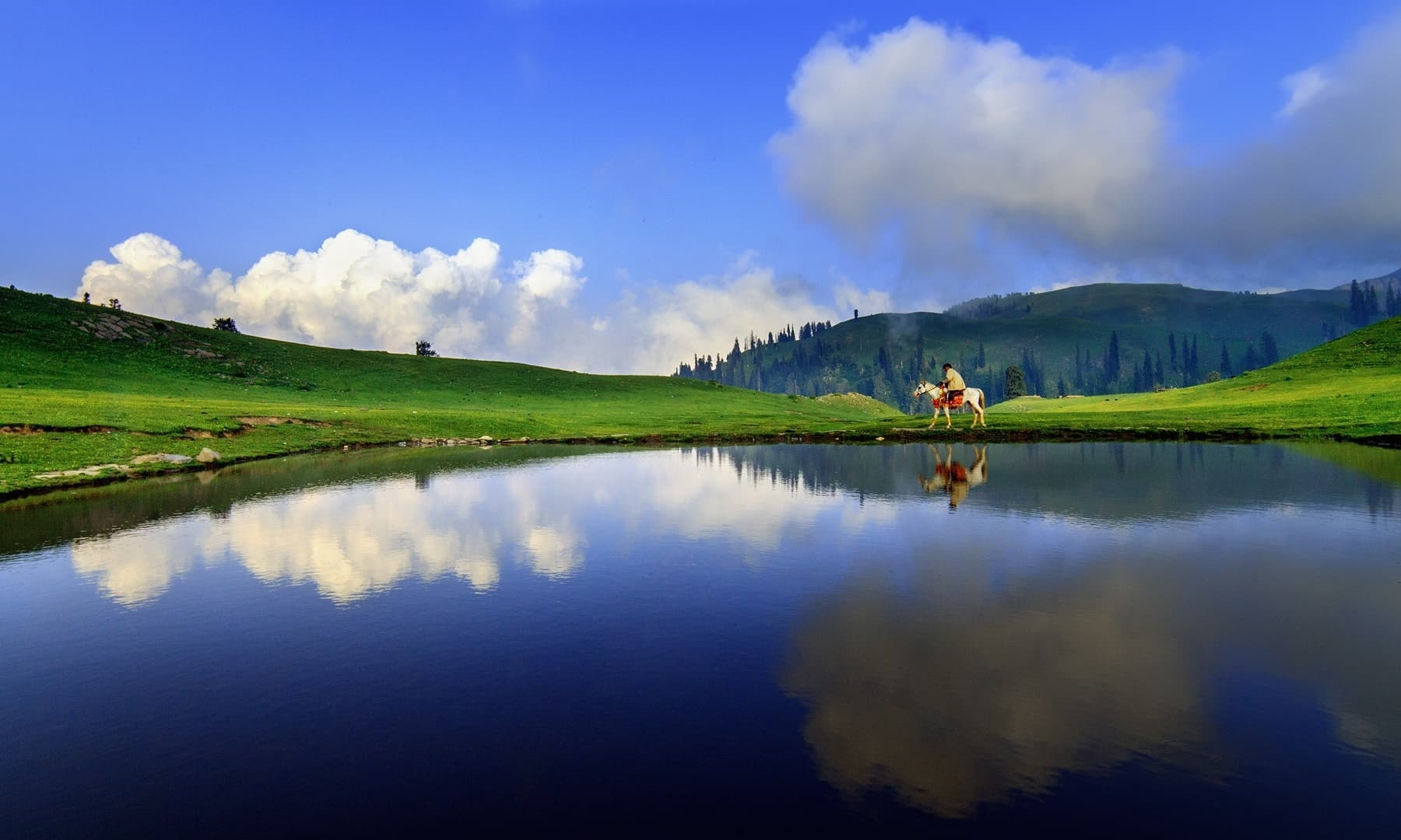— S.M.Bukhari's Photography