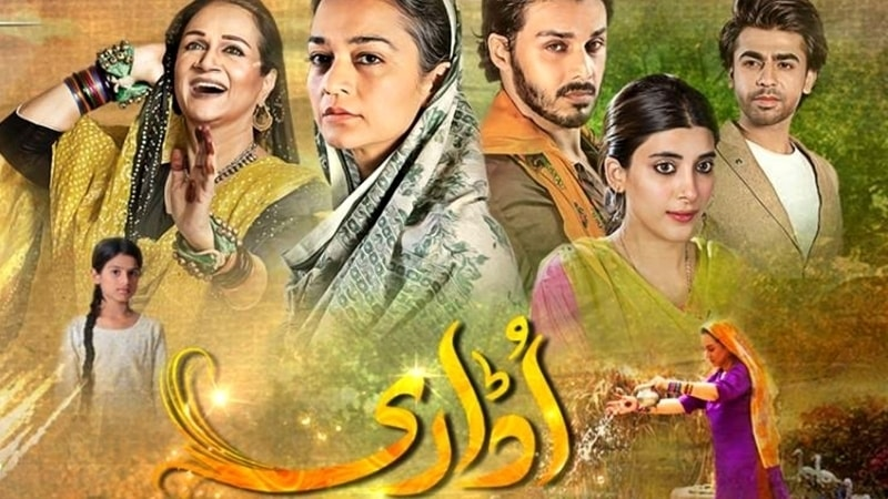 Hum TV's Udaari tried to tackle the social evil of child abuse