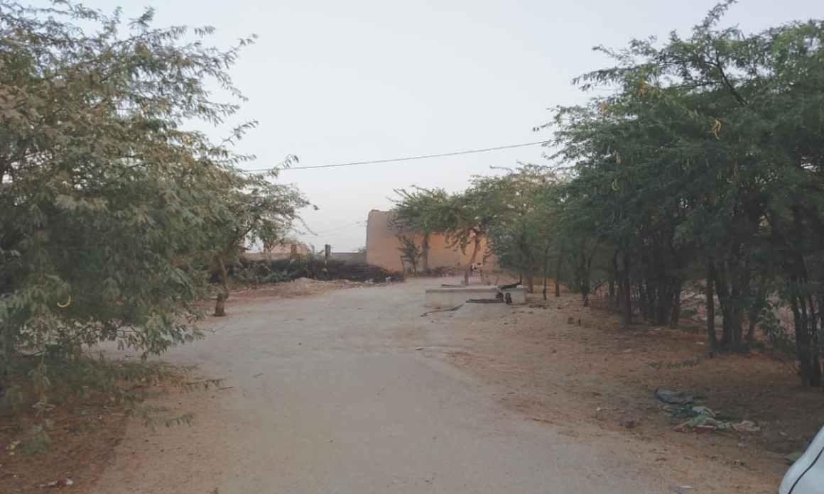 The road leading to Ameeran's house in Kharooro Charan, Umerkot. Credit: Bilal Karim Mughal