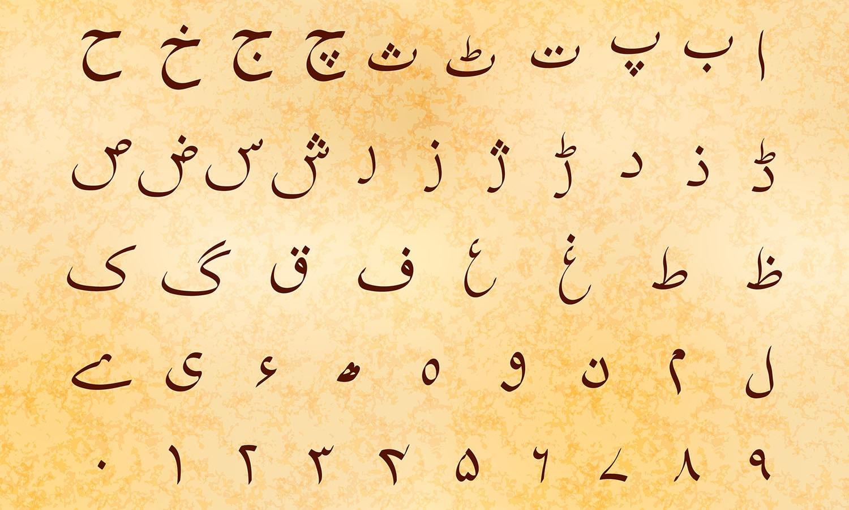 We Teach Urdu In America We Learned We Can T Use