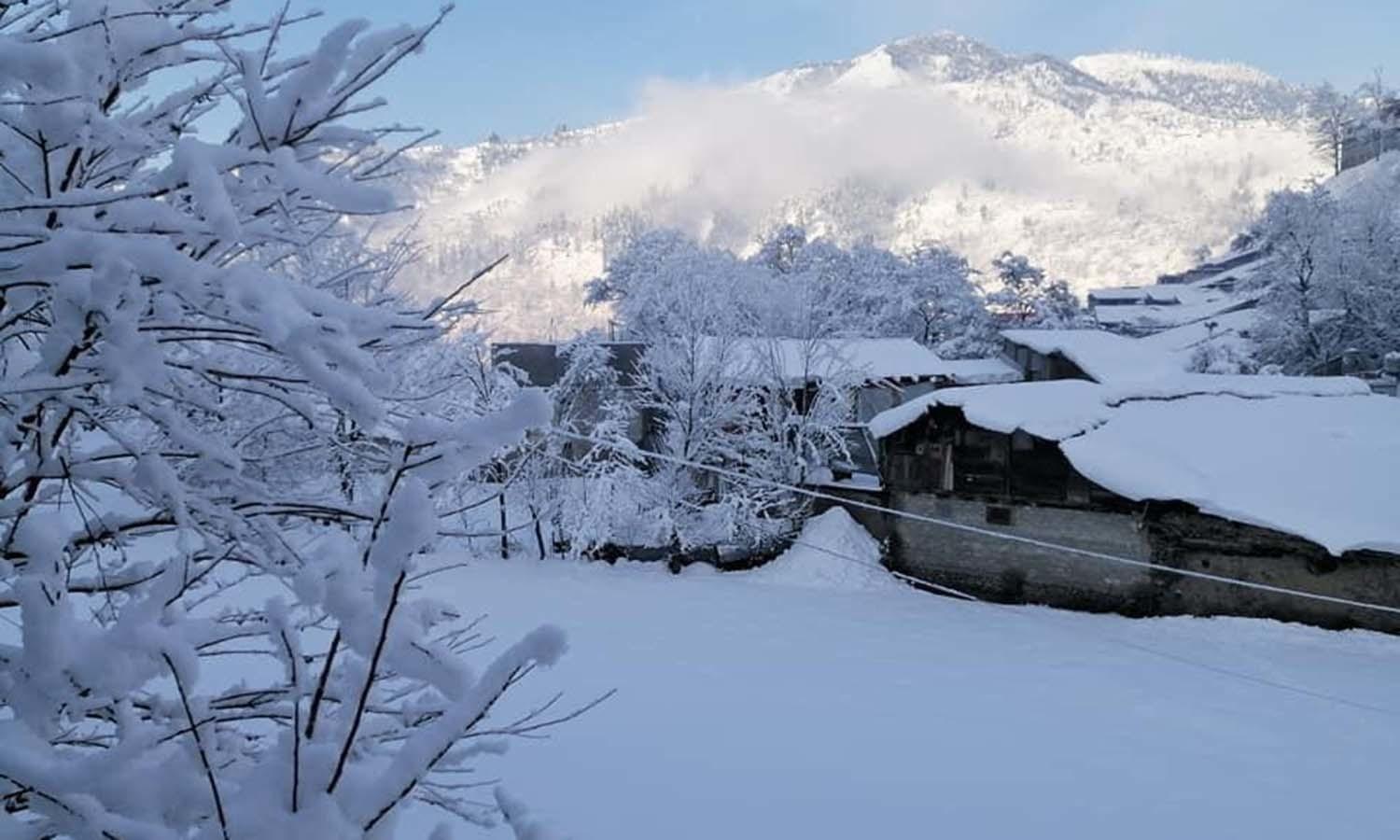 Days of snow accumulated over roofs and treetops in Swat— Murad Ali Khan