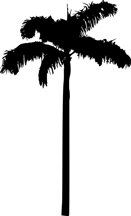 small resolution of 100 free clipart palm tree silhouette free images at clker com
