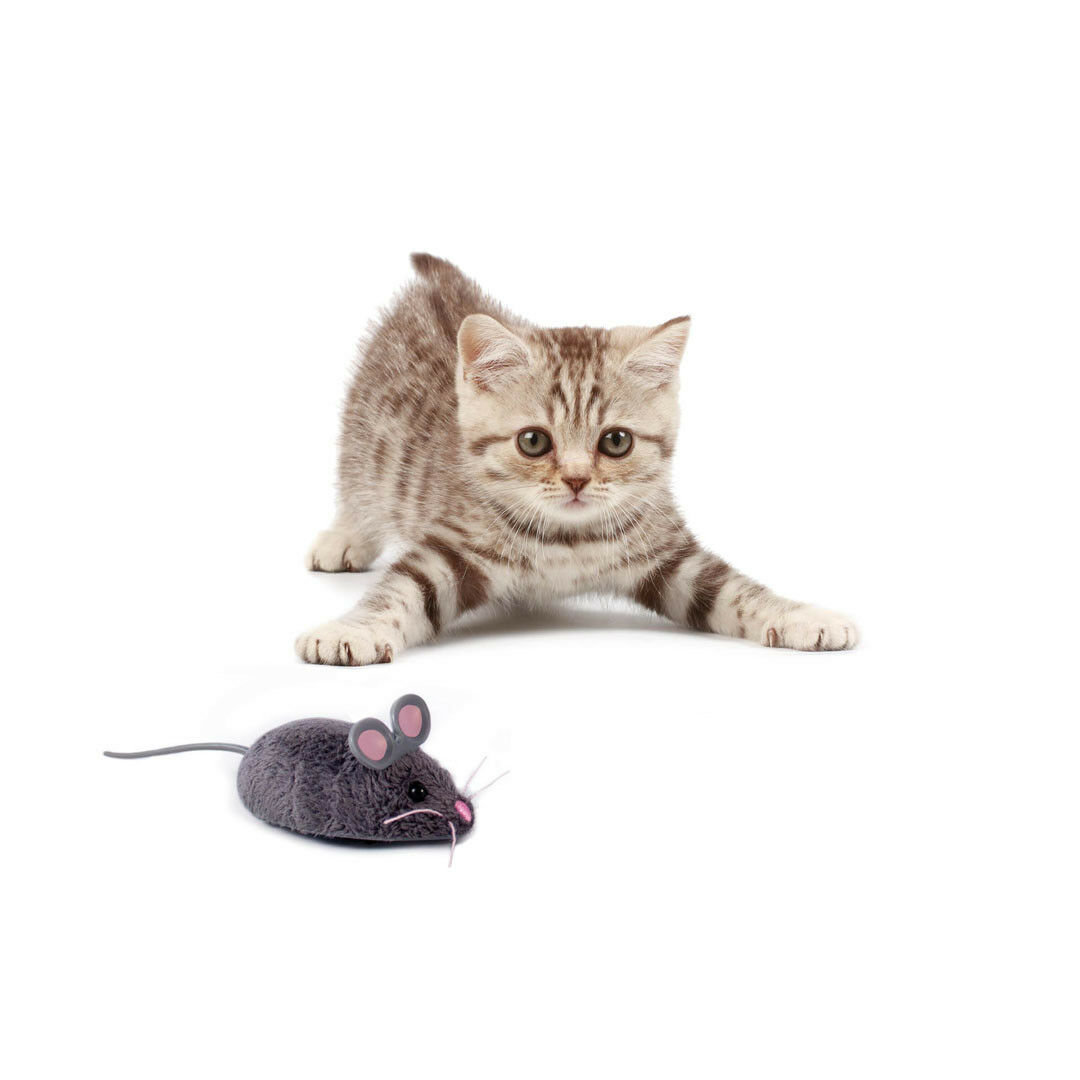 HEXBUG Nano Maus Cat Toy, Katzenspielzeug, Katze, Roboter, Mouse