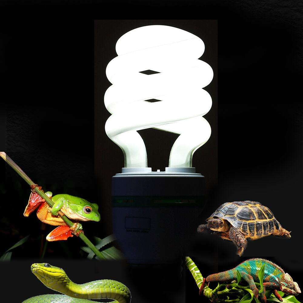 Reptile Uvb Light