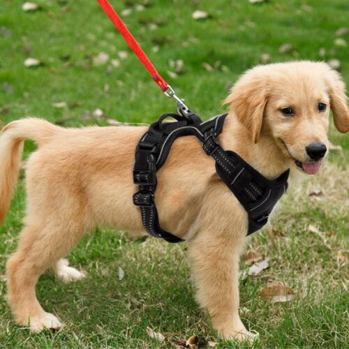 Hundegeschirr Anti Zug Geschirr No Pull Sicherheitsgeschirr Brustgeschirr Dog DE