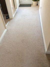 Cream fleck carpet plus grippers | in Norwich, Norfolk ...