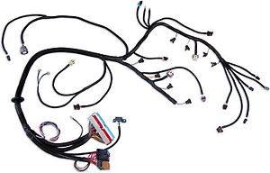 LS1 Wiring Harness EBay