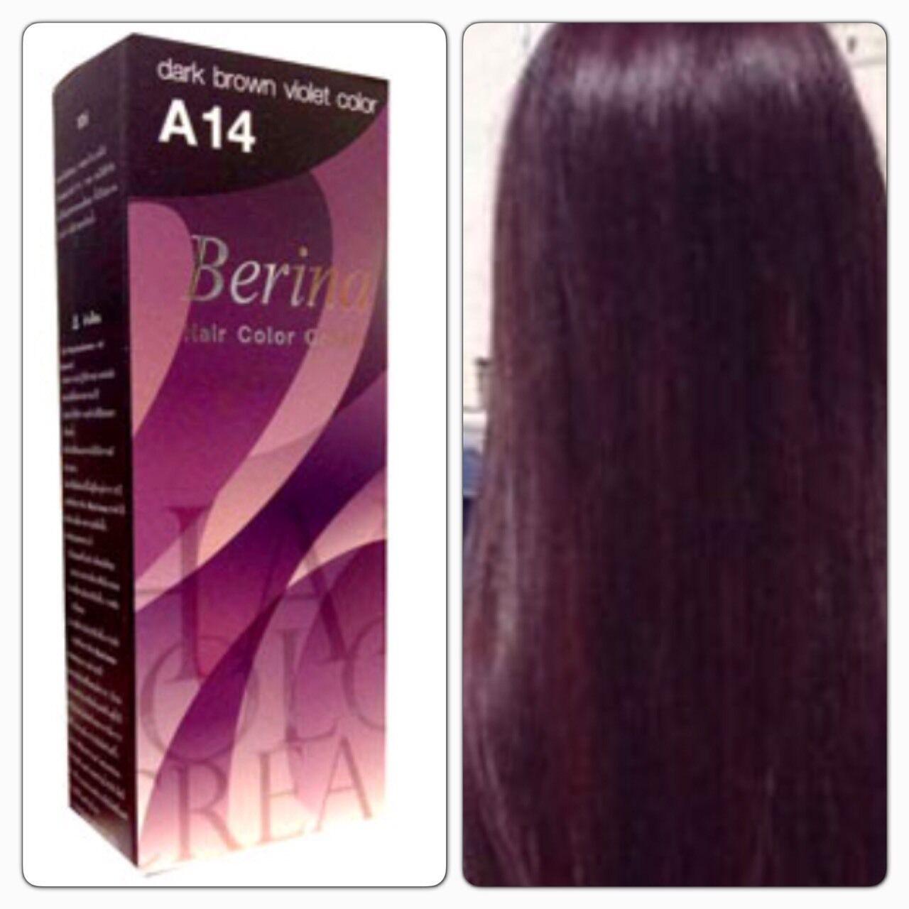 Berina A14 Dark Brown Violet Hair Color Cream Color