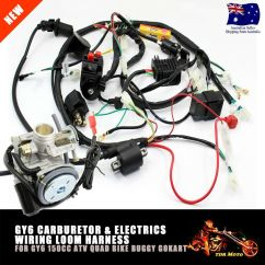 150cc Gy6 Scooter Wiring Diagram Derbi Senda 50cc Carby Carburetor Wire Loom Harness Solenoid Coil
