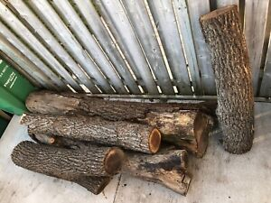 Black Walnut Logs For Sale Ontario