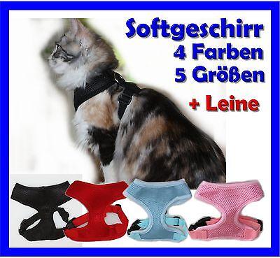 Softgeschirr Katze Katzengeschirr - Geschirr + Leine  Sicherheit für Freigänger!