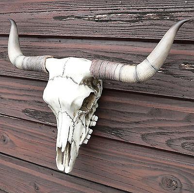 Schädel Bullenschädel Stierschädel Western Skull Horn Country Wacken kaufen NEU