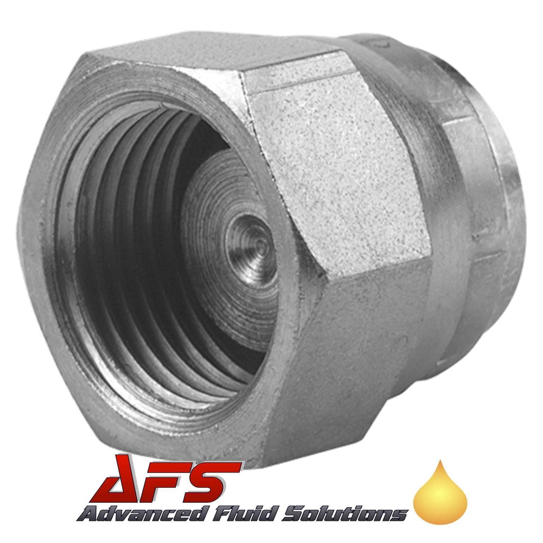 Carbon Steel Hydraulic Blanking Plugs & Caps