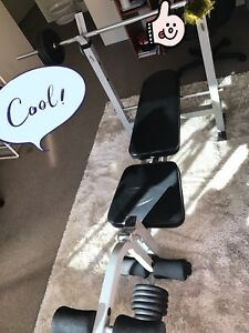 chair gym setup standing leaning home fitness gumtree australia belmont area