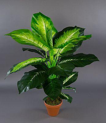 Dieffenbachia 75cm grün-gelb im Topf ZJ Kunstpflanzen künstliche Pflanzen
