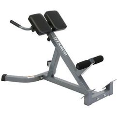 Diy Roman Chair Antique Ladder Back Chairs With Arms Hyperextension Bench Ebay Dtx Fitness Hyper Extension Exercise Lower