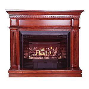 Ventless Natural Gas Fireplace  eBay