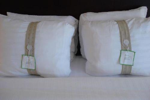 Holiday Inn Pillows  eBay
