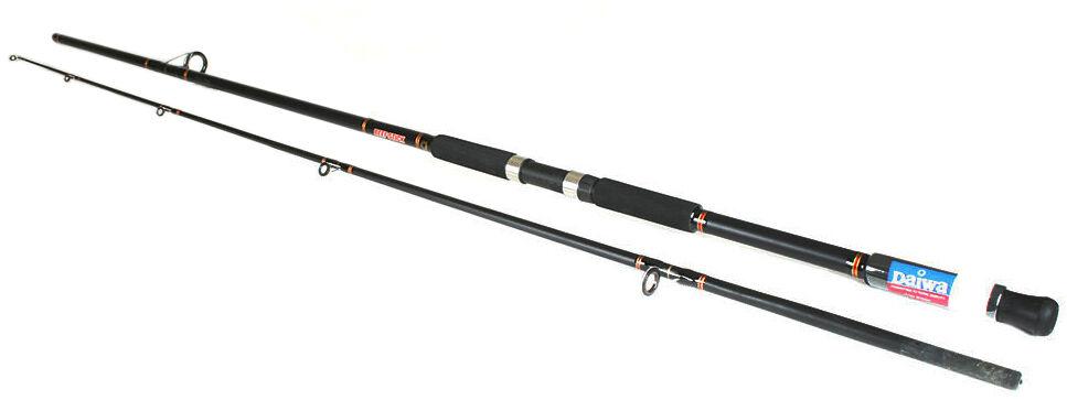 10 Foot Fishing Rod