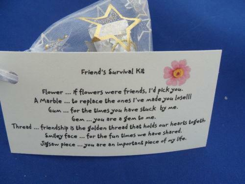 Friend Survival Kit Other Celebrations & Occasions EBay