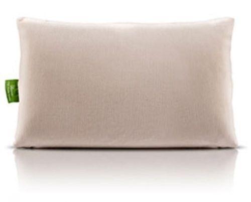 Rejuvenite Pillow  eBay