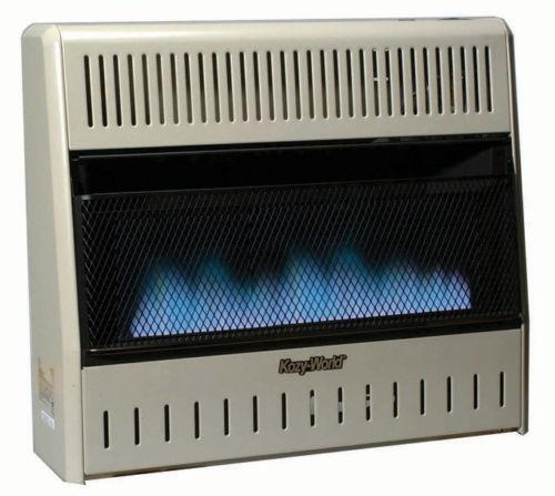 Gas Heater  eBay