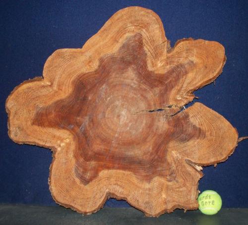Cypress Wood EBay