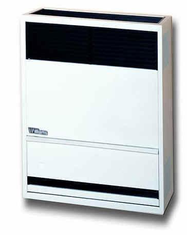 Direct Vent Gas Heater  eBay