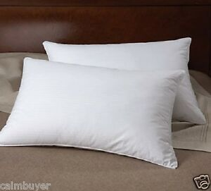 100 Pure Hungarian Goose Down Hotel Quality Single Pillow