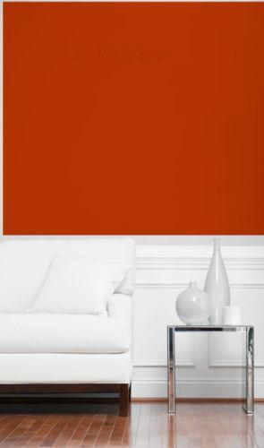 Terracotta Wallpaper EBay