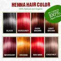Henna Hair Color  100 Organic and Chemical Free Henna for ...