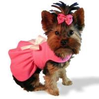 Handmade Dog Clothes | eBay
